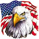 Eagle with a Tear/American Flag T-Shirt Gray
